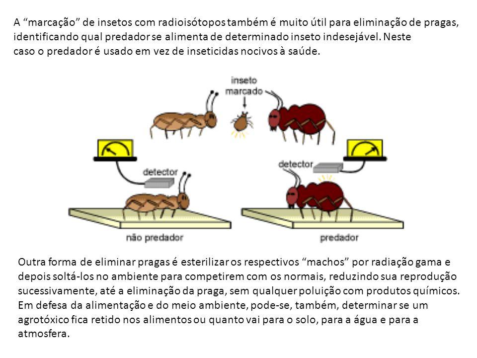 A marcação de insetos com radioisótopos também é muito útil para eliminação de pragas, identificando qual predador se alimenta de determinado inseto i