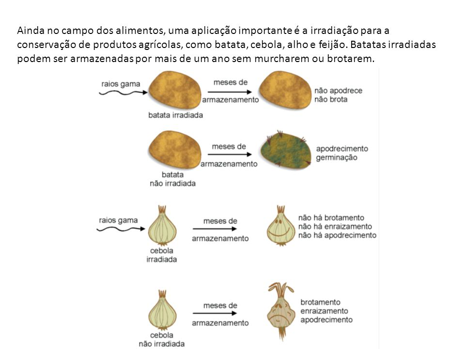 Ainda no campo dos alimentos, uma aplicação importante é a irradiação para a conservação de produtos agrícolas, como batata, cebola, alho e feijão. Ba