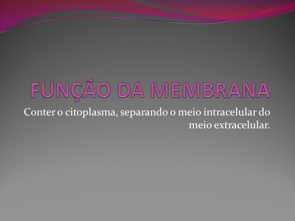 Conter o citoplasma, separando o meio intracelular do meio extracelular.