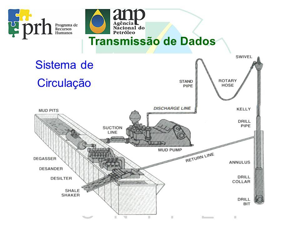 Transmissão de Dados Sistema de Circulação