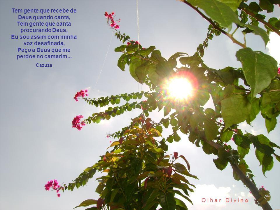 Sol da manhã Porque todo dia o Sol da manhã vem e nos desafia... Paralamas do Sucesso