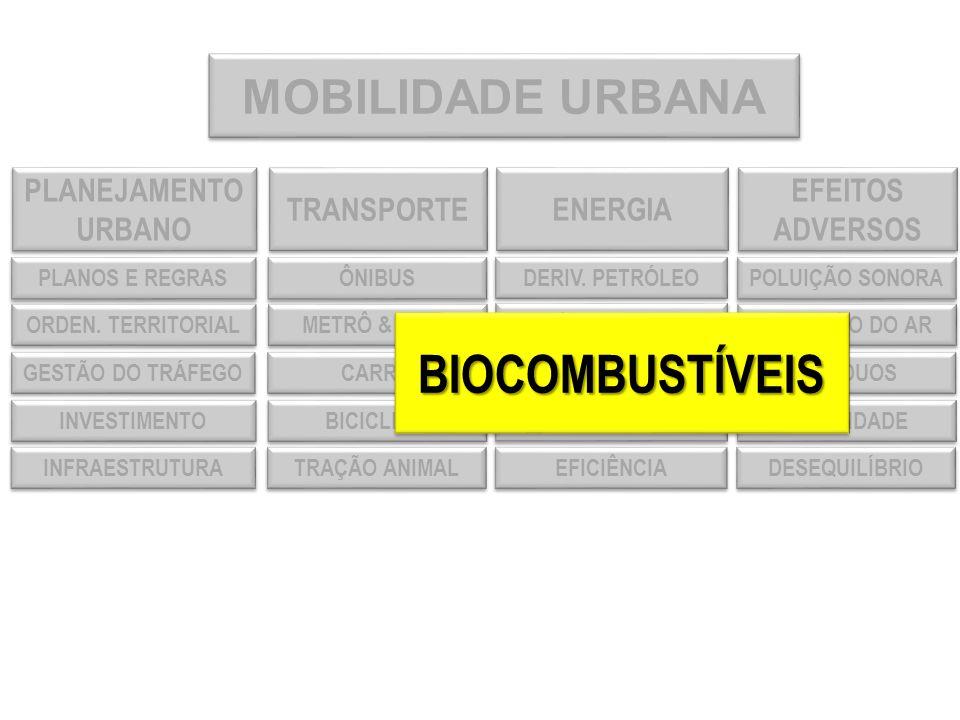 CONCEITO DE SUSTENTABILIDADE ECONOMIASOCIEDADE AMBIENTE