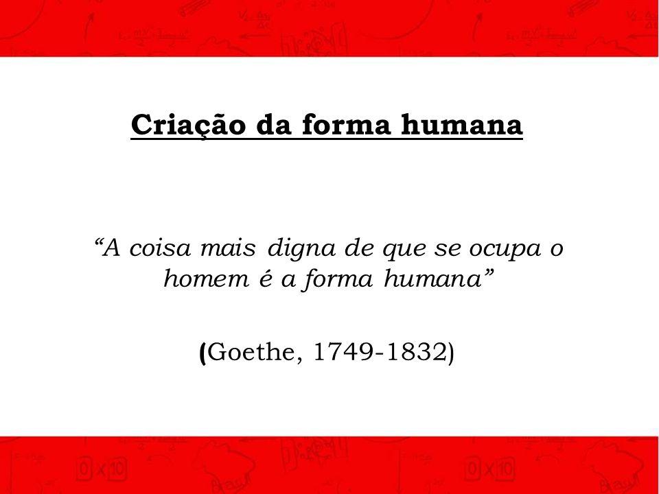 Criação da forma humana A coisa mais digna de que se ocupa o homem é a forma humana ( Goethe, 1749-1832)