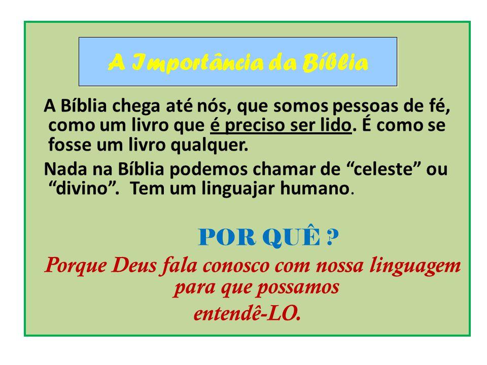 A Bíblia chega até nós, que somos pessoas de fé, como um livro que é preciso ser lido. É como se fosse um livro qualquer. Nada na Bíblia podemos chama