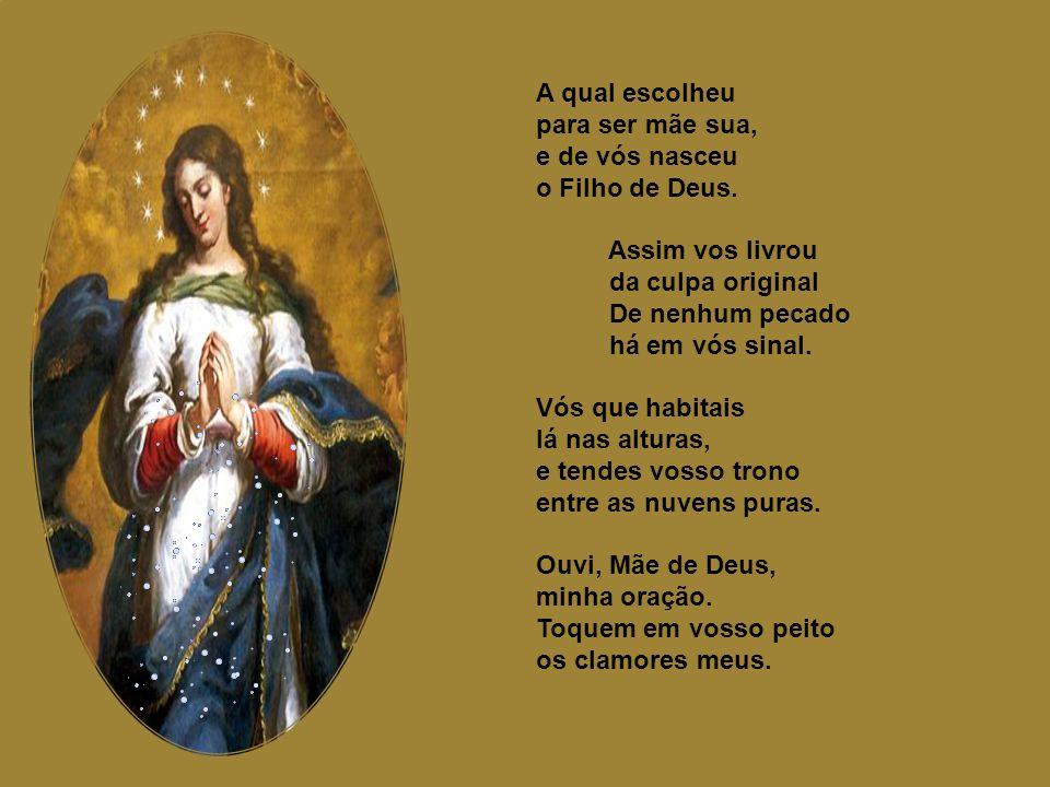 Terça Sede em meu favor, Virgem soberana, livrai-me do inimigo com vosso valor. Glória seja ao Pai, ao Filho e ao Amor também, que é um só Deus em pes