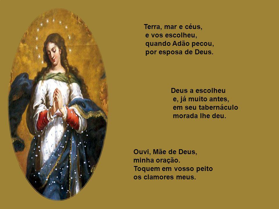 Deus vos salve, Virgem, Senhora do mundo, rainha dos céus, e das virgens, Virgem. Estrela da manhã, Deus vos salve, cheia de graça divina, formosa e l