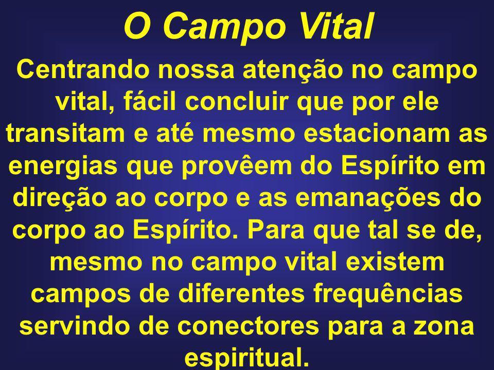 O Campo Vital Centrando nossa atenção no campo vital, fácil concluir que por ele transitam e até mesmo estacionam as energias que provêem do Espírito