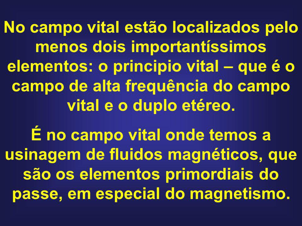 No campo vital estão localizados pelo menos dois importantíssimos elementos: o principio vital – que é o campo de alta frequência do campo vital e o d