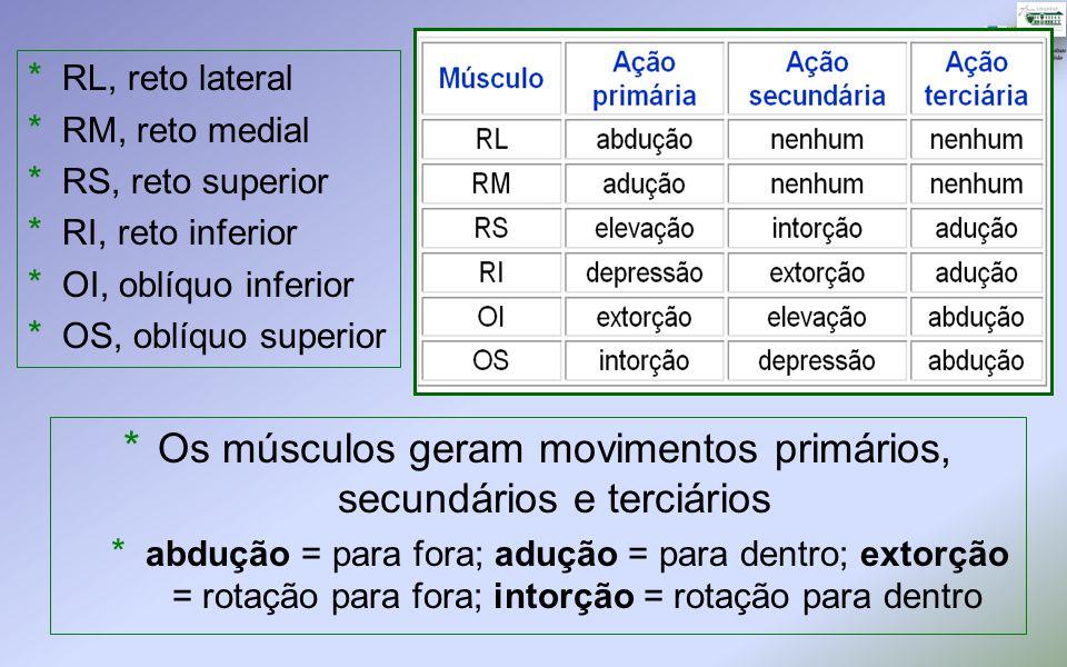 * Os músculos geram movimentos primários, secundários e terciários * abdução = para fora; adução = para dentro; extorção = rotação para fora; intorção