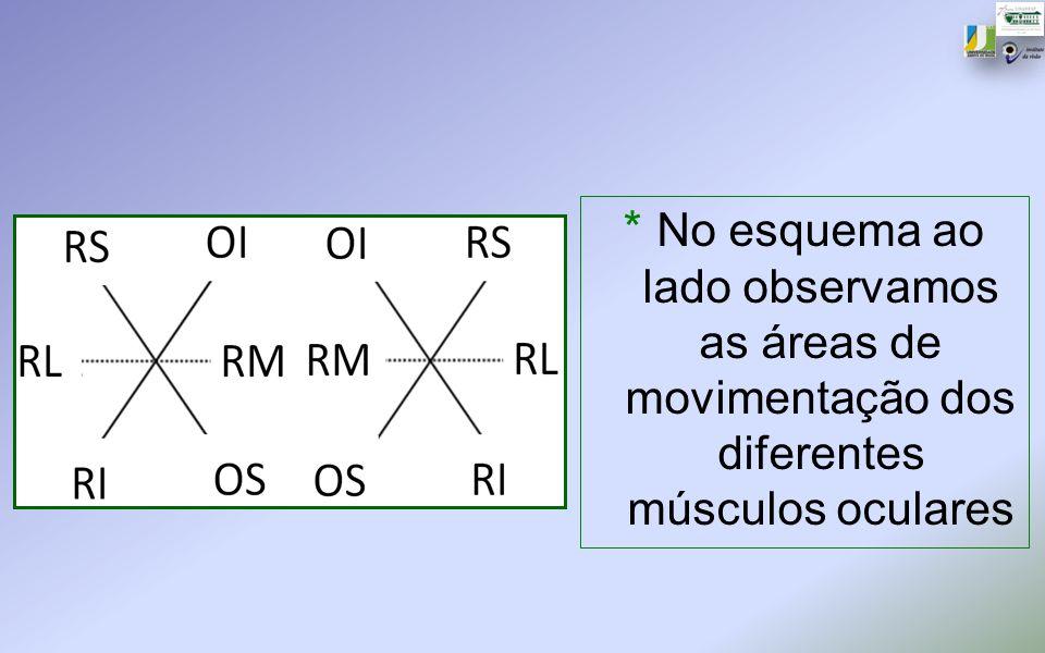 * No esquema ao lado observamos as áreas de movimentação dos diferentes músculos oculares