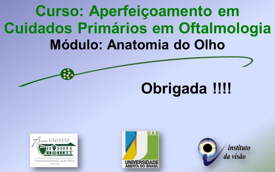 Curso: Aperfeiçoamento em Cuidados Primários em Oftalmologia Módulo: Anatomia do Olho Obrigada !!!!
