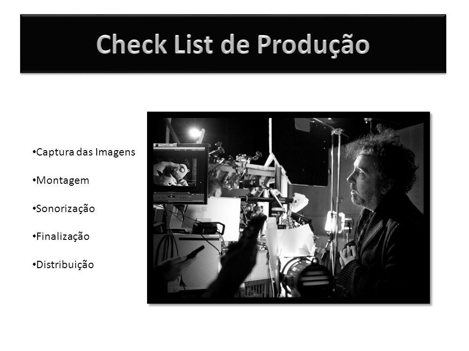 Captura das Imagens Montagem Sonorização Finalização Distribuição