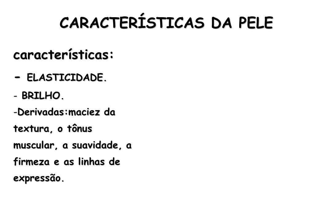 ESTRUTURA DA PELE EPIDERME – EPIDERME – Camada externa.