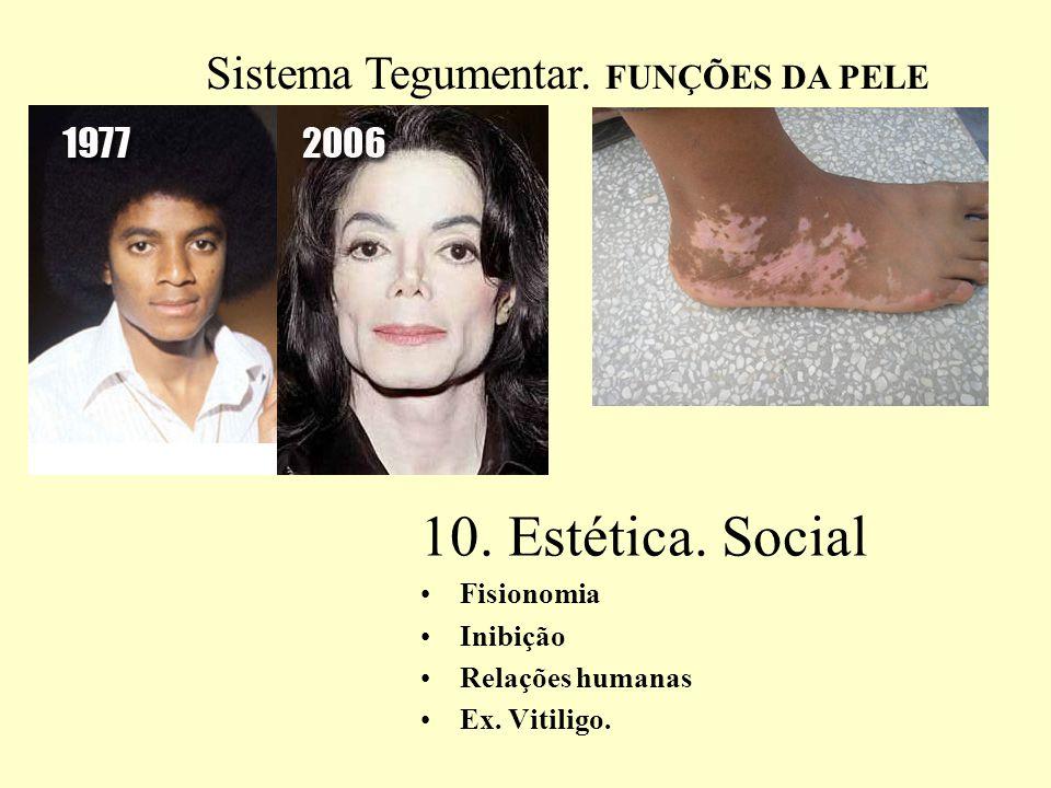 11. ABSORÇÃO DE MEDICAMENTOS
