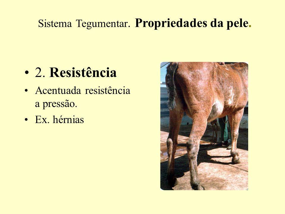 2.Resistência Acentuada resistência a pressão. Ex.