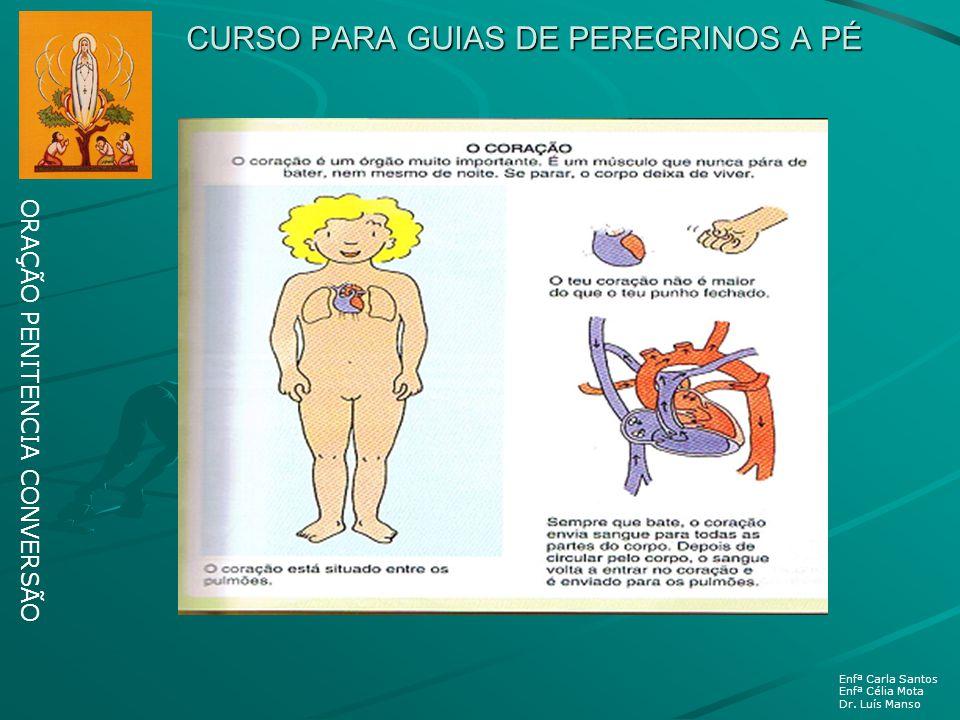 CURSO PARA GUIAS DE PEREGRINOS A PÉ ORAÇÃO PENITENCIA CONVERSÃO Enfª Carla Santos Enfª Célia Mota Dr. Luís Manso