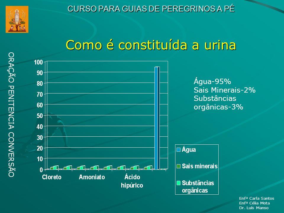 CURSO PARA GUIAS DE PEREGRINOS A PÉ Como é constituída a urina ORAÇÃO PENITENCIA CONVERSÃO Enfª Carla Santos Enfª Célia Mota Dr. Luís Manso Água-95% S