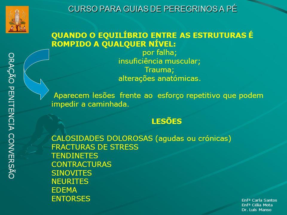 CURSO PARA GUIAS DE PEREGRINOS A PÉ ORAÇÃO PENITENCIA CONVERSÃO Enfª Carla Santos Enfª Célia Mota Dr. Luís Manso QUANDO O EQUILÍBRIO ENTRE AS ESTRUTUR