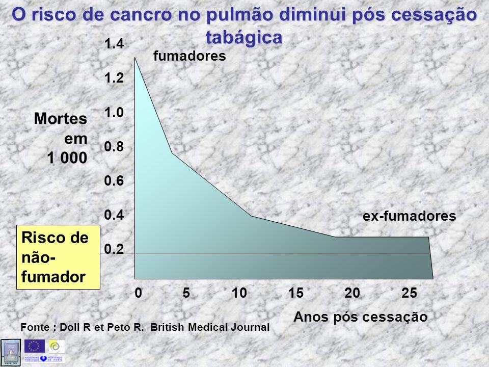 Risco de contrair uma doença devido ao tabaco Fontes : Fielding, 1985 ; US Dept of Health and Human Services, 1989; Wald, 1996; Slama, 1998.