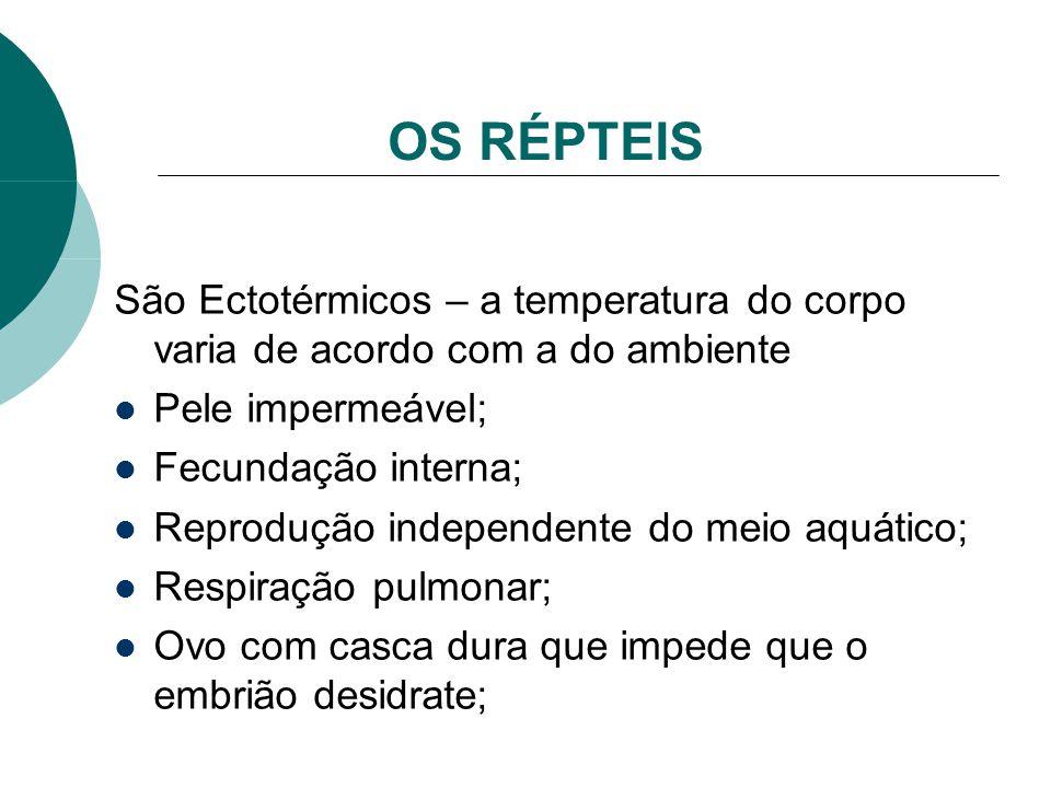 OS RÉPTEIS São Ectotérmicos – a temperatura do corpo varia de acordo com a do ambiente Pele impermeável; Fecundação interna; Reprodução independente d