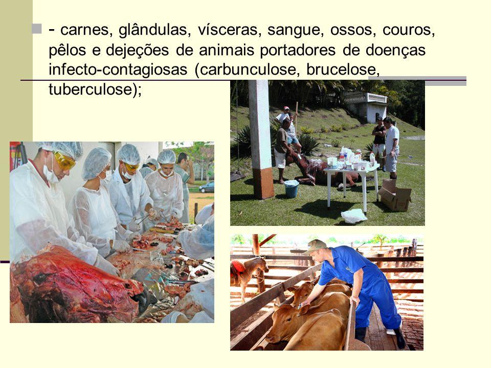 - carnes, glândulas, vísceras, sangue, ossos, couros, pêlos e dejeções de animais portadores de doenças infecto-contagiosas (carbunculose, brucelose,