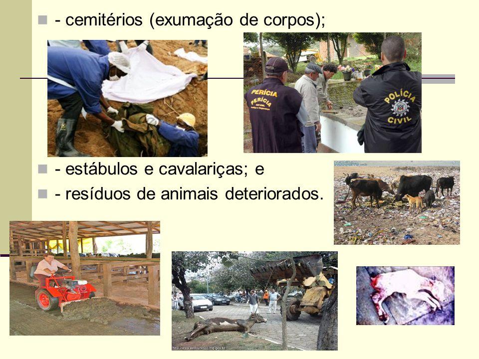 - cemitérios (exumação de corpos); - estábulos e cavalariças; e - resíduos de animais deteriorados.
