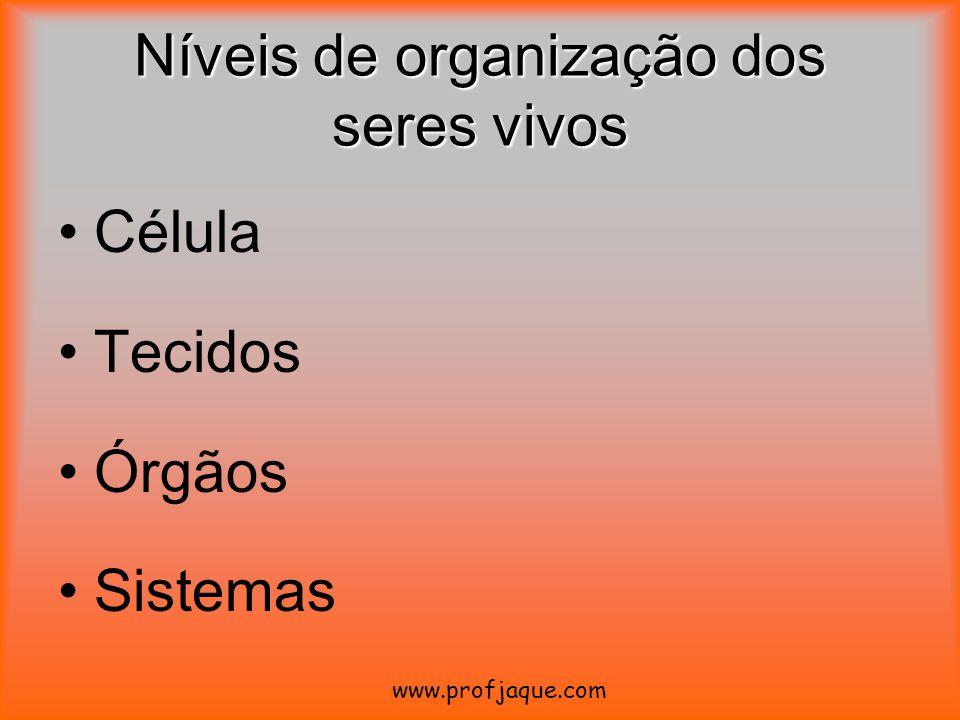 Níveis de organização dos seres vivos Célula Tecidos Órgãos Sistemas www.profjaque.com