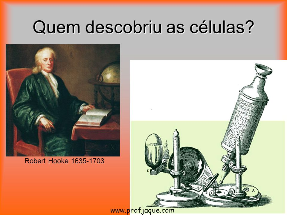 Quem descobriu as células? Robert Hooke 1635-1703 www.profjaque.com