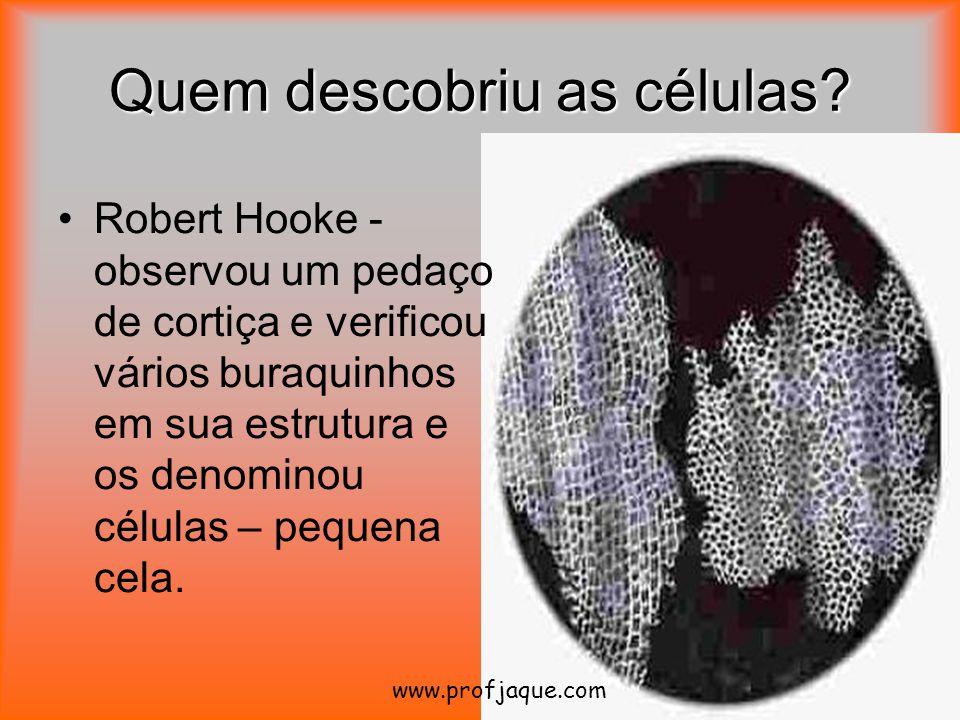 Quem descobriu as células? Robert Hooke - observou um pedaço de cortiça e verificou vários buraquinhos em sua estrutura e os denominou células – peque