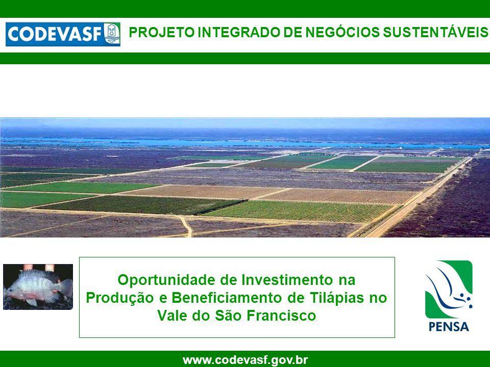 1 www.codevasf.gov.br PROJETO INTEGRADO DE NEGÓCIOS SUSTENTÁVEIS Oportunidade de Investimento na Produção e Beneficiamento de Tilápias no Vale do São