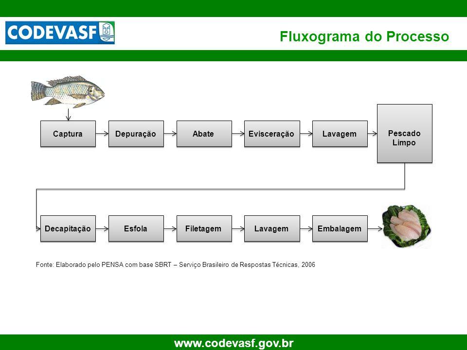 10 www.codevasf.gov.br Fluxograma do Processo Captura Depuração Abate Evisceração Lavagem Pescado Limpo Decapitação Esfola Filetagem Lavagem Embalagem