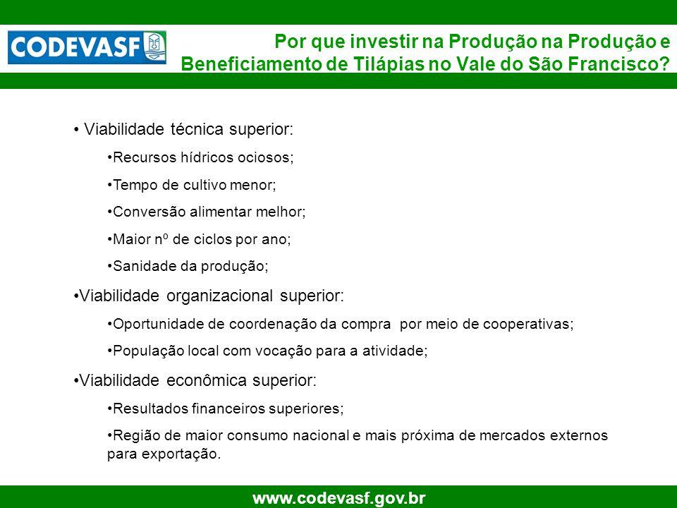 30 www.codevasf.gov.br Por que investir na Produção na Produção e Beneficiamento de Tilápias no Vale do São Francisco? Viabilidade técnica superior: R