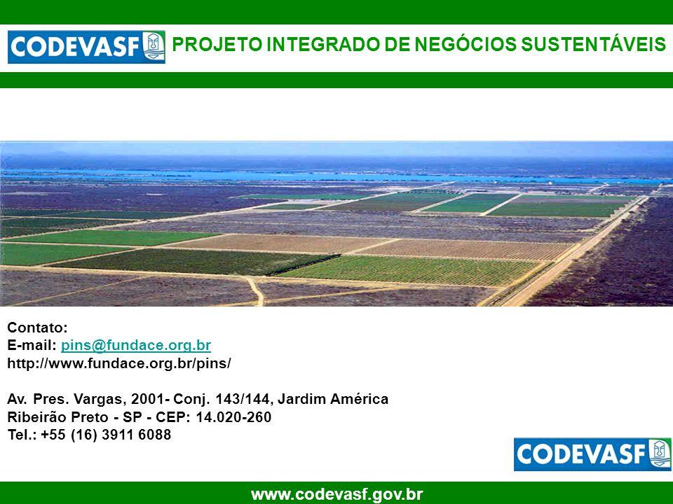 32 www.codevasf.gov.br PROJETO INTEGRADO DE NEGÓCIOS SUSTENTÁVEIS Contato: E-mail: pins@fundace.org.brpins@fundace.org.br http://www.fundace.org.br/pi