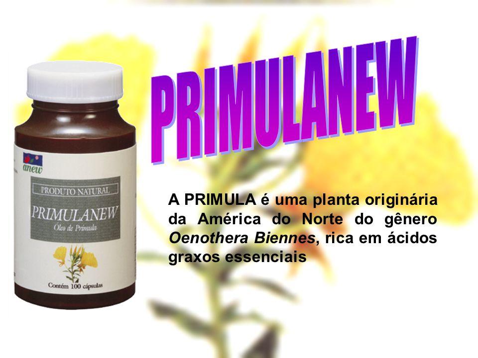 A PRIMULA é uma planta originária da América do Norte do gênero Oenothera Biennes, rica em ácidos graxos essenciais