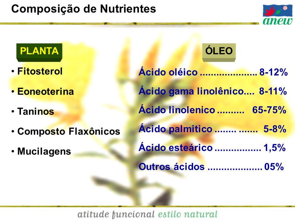 Composição de Nutrientes Fitosterol Eoneoterina Taninos Composto Flaxônicos Mucilagens PLANTA Ácido oléico..................... 8-12% Ácido gama linol