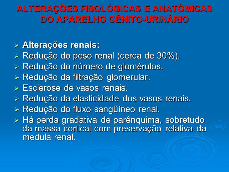 ALTERAÇÕES FISOLÓGICAS E ANATÔMICAS DO APARELHO GÊNITO-URINÁRIO Alterações renais: Alterações renais: Redução do peso renal (cerca de 30%). Redução do