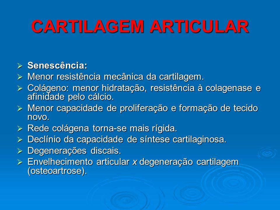 CARTILAGEM ARTICULAR Senescência: Senescência: Menor resistência mecânica da cartilagem. Menor resistência mecânica da cartilagem. Colágeno: menor hid
