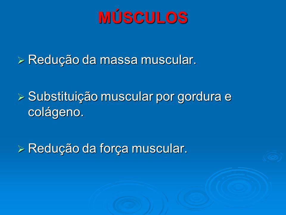 MÚSCULOS Redução da massa muscular. Redução da massa muscular. Substituição muscular por gordura e colágeno. Substituição muscular por gordura e colág