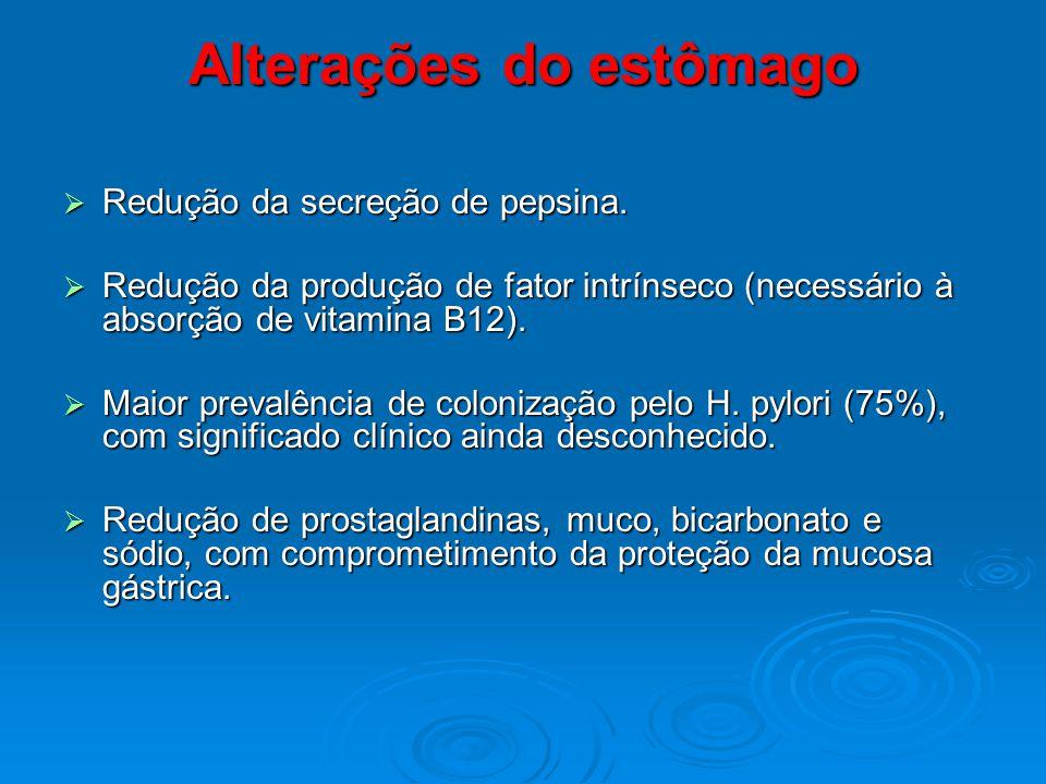 Alterações do estômago Redução da secreção de pepsina. Redução da secreção de pepsina. Redução da produção de fator intrínseco (necessário à absorção