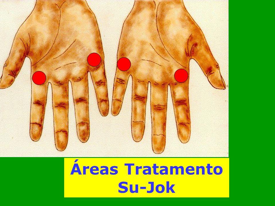 Áreas Tratamento Su-Jok