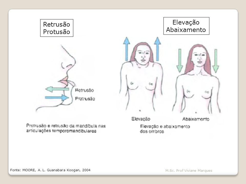 M.Sc.Prof Viviane Marques Fonte: MOORE, A. L.