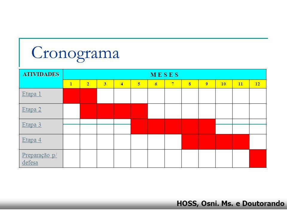 HOSS, Osni. Ms. e Doutorando Cronograma ATIVIDADES M E S E S 123456789101112 Etapa 1 Etapa 2 Etapa 3 Etapa 4 Preparação p/ defesa