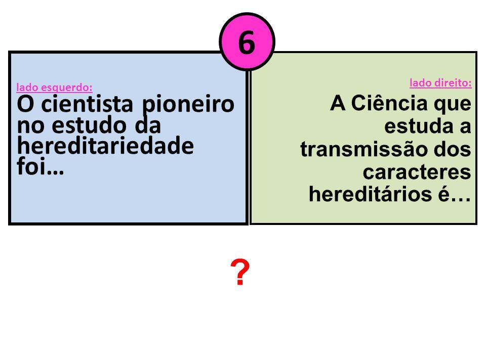 lado esquerdo: O cientista pioneiro no estudo da hereditariedade foi… lado direito: A Ciência que estuda a transmissão dos caracteres hereditários é…