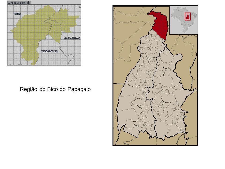 Região do Bico do Papagaio