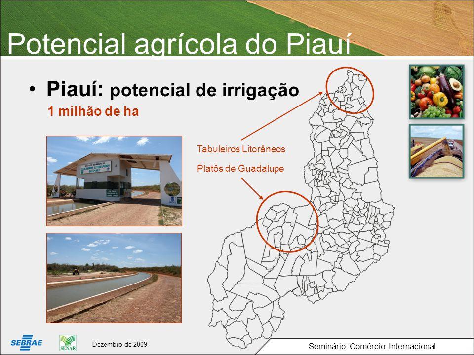 Potencial agrícola do Piauí Piauí: potencial de irrigação 1 milhão de ha Platôs de Guadalupe Tabuleiros Litorâneos Seminário Comércio Internacional Dezembro de 2009