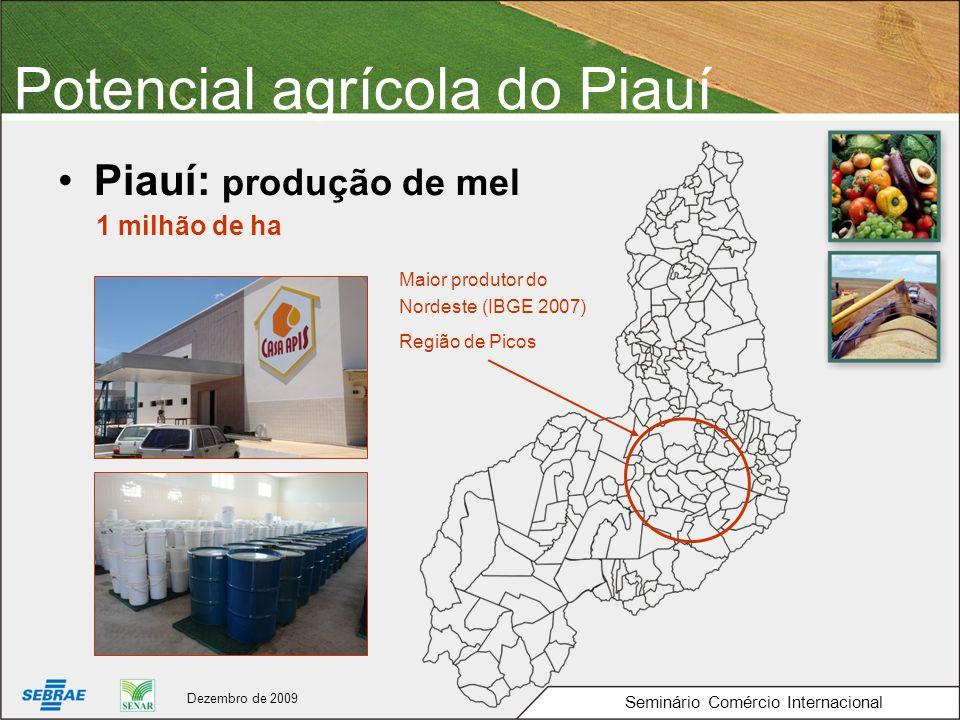 Potencial agrícola do Piauí Piauí: produção de mel 1 milhão de ha Região de Picos Seminário Comércio Internacional Dezembro de 2009 Maior produtor do Nordeste (IBGE 2007)