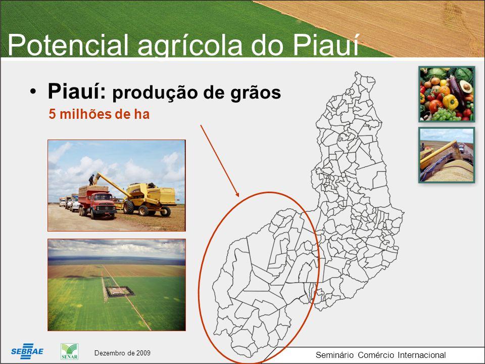 Potencial agrícola do Piauí Piauí: produção de grãos 5 milhões de ha Seminário Comércio Internacional Dezembro de 2009
