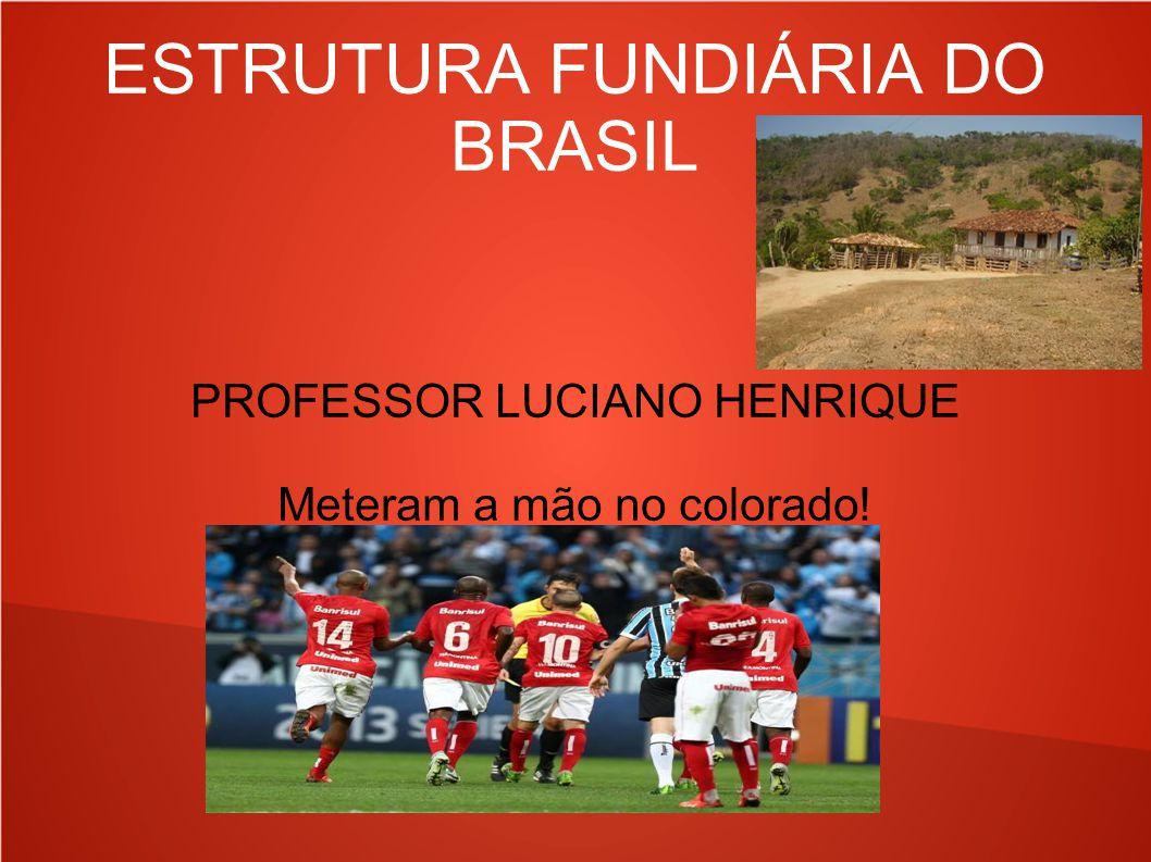 ESTRUTURA FUNDIÁRIA DO BRASIL PROFESSOR LUCIANO HENRIQUE Meteram a mão no colorado!