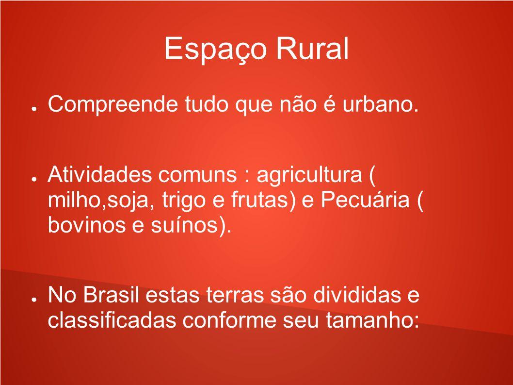 Espaço Rural Compreende tudo que não é urbano. Atividades comuns : agricultura ( milho,soja, trigo e frutas) e Pecuária ( bovinos e suínos). No Brasil