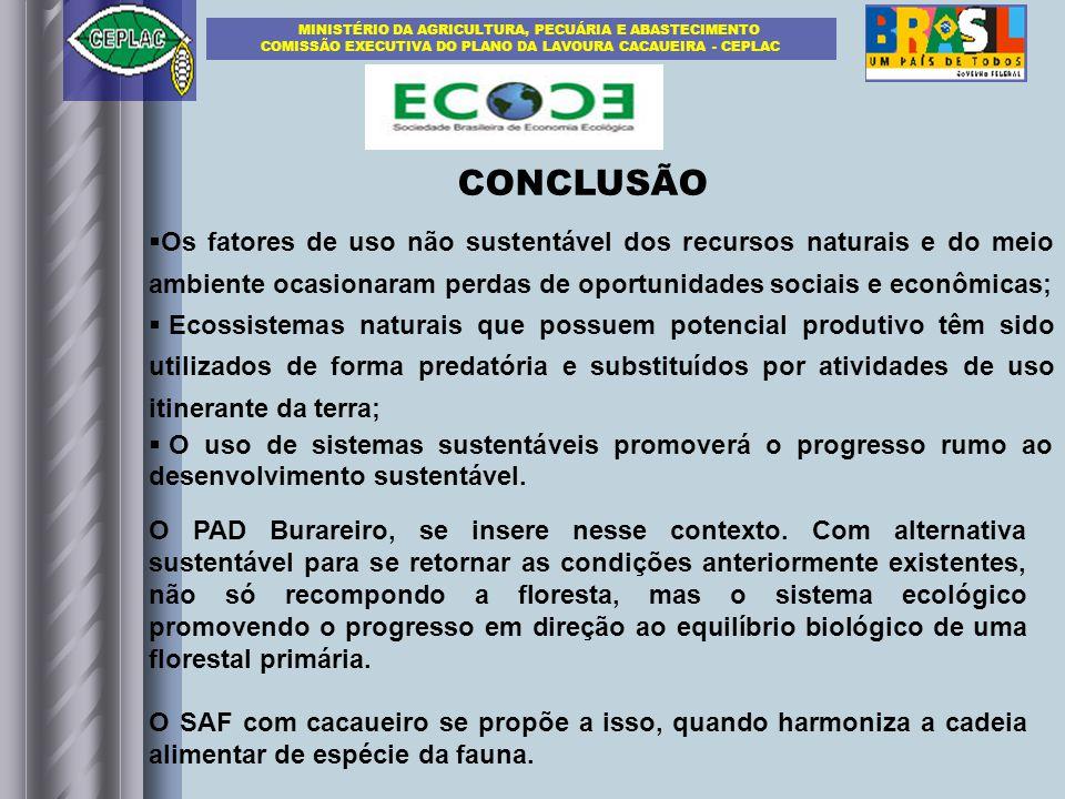 CONCLUSÃO Os fatores de uso não sustentável dos recursos naturais e do meio ambiente ocasionaram perdas de oportunidades sociais e econômicas; Ecossis